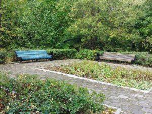 Инфраструктура санаторий Дубки Ульяновск официальный сайт цены с лечением